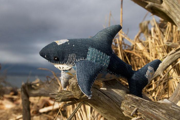 Salmon Shark, 2015